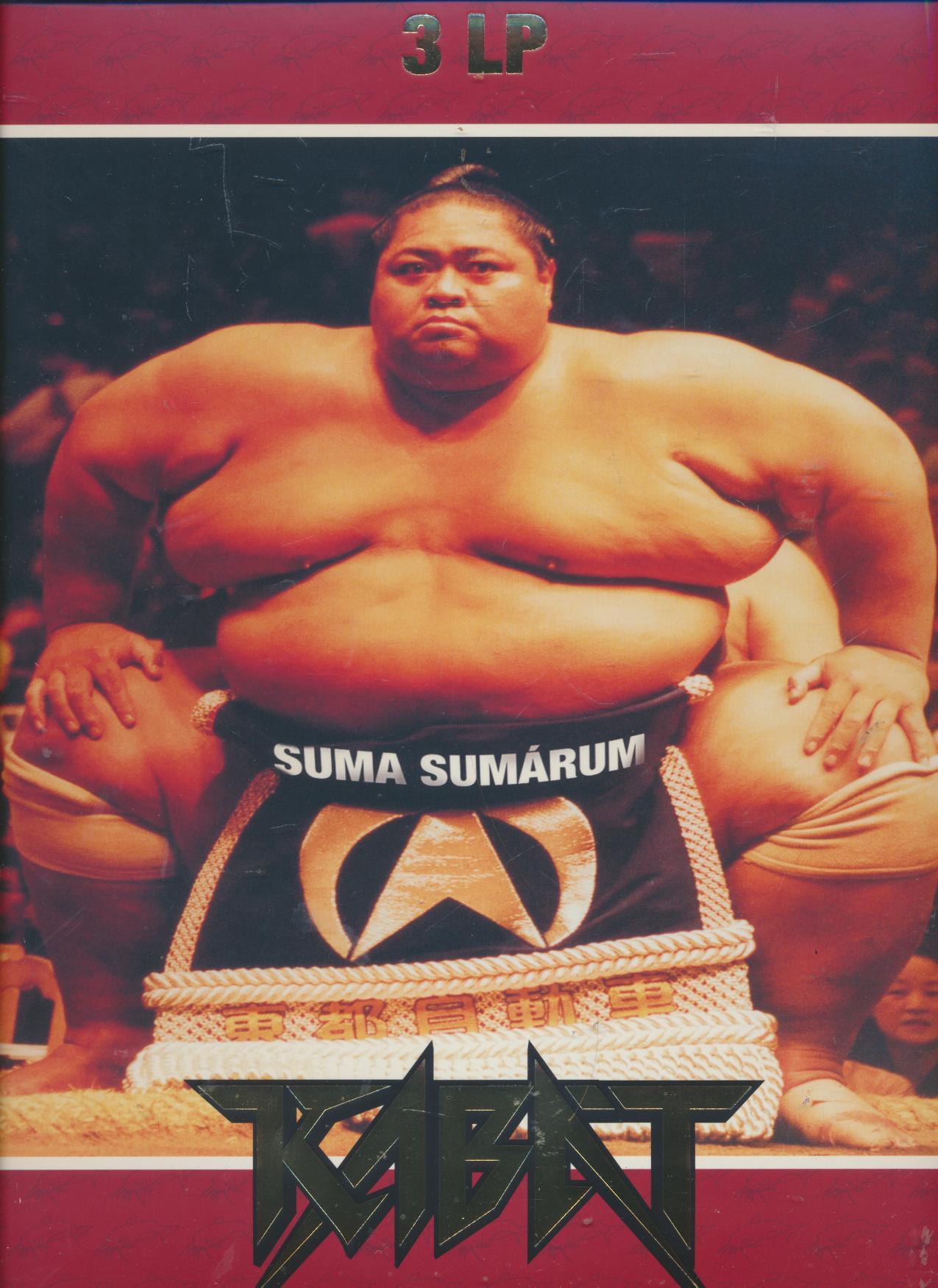 SUMA SUMARUM [VINYL] - supershop.sk