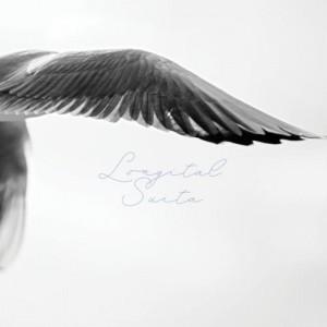 LONGITAL SUITA - supershop.sk