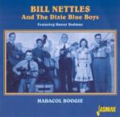 NETTLES BILL  - CD HADACOL BOOGIE