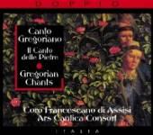 VARIOUS  - 2xCD GREGORIAN CHANTS/CANTO GR