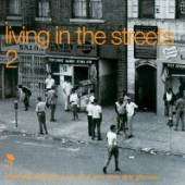 VARIOUS  - 2xVINYL LIVING IN TH..