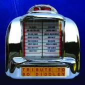 VARIOUS  - CD TRIBUTE TO BO DIDDLEY