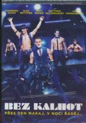 FILM  - DVD BEZ KALHOT DVD