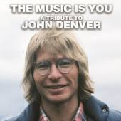 DENVER JOHN.=TRIB=  - 2xVINYL MUSIC IS YOU..