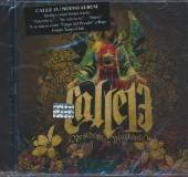 CALLE 13  - CD RESIDENTE O VISITANTE
