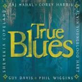 VARIOUS  - CD TRUE BLUES