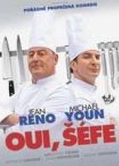 FILM  - DVD Oui, šéfe! (The Chef ) DVD