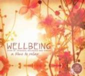 VARIOUS  - CD WELLBEING-A TIME TO RELAX