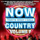 VARIOUS  - CD NOW THAT'S... COUNTRY VOLUME 7