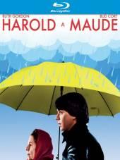FILM  - DVD Harold a Maude (..