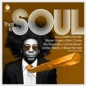 VARIOUS  - 2xCD THAT IS SOUL