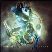 DOWNLOAD  - CD LINGAM