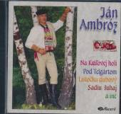 AMBROZ JAN  - CD NA KRALOVEJ HOLI