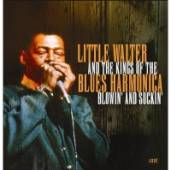 VARIOUS  - 4xCD LITTLE WALTER & KING OF..
