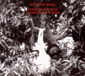 HUDSON KEITH  - CD FLESH OF MY SKIN