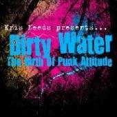 DIRTY WATER: THE BIRTH OF PUNK..  - CD DIRTY WATER: THE ..