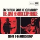 HENDRIX JIMI  - SI CAN YOU PLEASE CRAWL.. /7