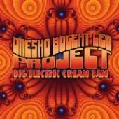 ONESKO BOGERT CEO PROJECT  - CD BIG ELECTRIC CREAM JAM