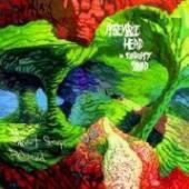 ASSEMBLE HEAD IN SUNBURST SOUN..  - CD WHEN SWEET SLEEP RETURNED