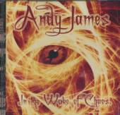 JAMES ANDY  - CD IN THE WAKE OF CHAOS