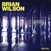 BRIAN WILSON  - CD NO PIER PRESSURE