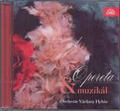 VARIOUS  - CD OPERETA & MUZIKAL..