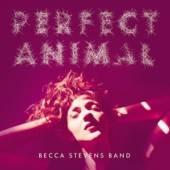 STEVENS BECCA  - CD PERFECT ANIMAL