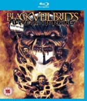 ALIVE AND BURNING [BLURAY] - supershop.sk