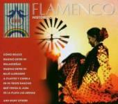 VARIOUS  - 2xCD FLAMENCO-HISTORICO
