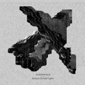 SCHONWALD  - CD BETWEEN PARALLEL LIGHTS