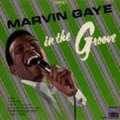 MARVIN GAYE  - VINYL IN THE GROOVE [VINYL]