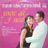 GAYE MARVIN - TERRELL TAMMI  - VINYL YOU'RE ALL I NEED [VINYL]