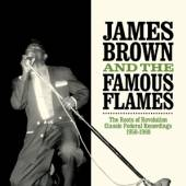 BROWN JAMES & THE FAMOUS  - 2xCD ROOTS OF REVOLUTION