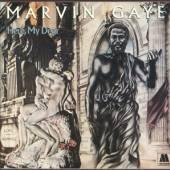GAYE MARVIN  - 2xVINYL HERE,MY DEAR..