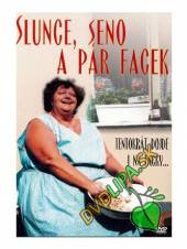 FILM  - DVP Slunce, seno a pár facek DVD