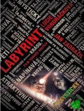 FILM  - DVD LABYRINT (2012) - DVD