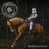 STEVE N SEAGULLS  - VINYL BROTHERS IN FARMS [VINYL]