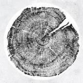 MONTGOMERY ROY  - 2xVINYL M: DARKMOTIF DANCEHALL [VINYL]