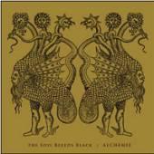 SOIL BLEEDS BLACK  - CDD ALCHEMIE