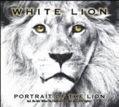 WHITE LION  - CDD PORTRAIT OF THE LION