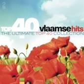 VARIOUS  - CD TOP 40 - VLAAMSE HITS