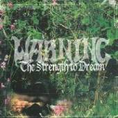 STRENGTH TO DREAM [VINYL] - supershop.sk