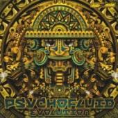 VARIOUS  - CD PSYCHOFLUID: EVOLUTION