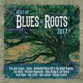 VARIOUS  - 2xCD BEST OF BLUES & ROOTS..