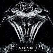 HYBREED CHAOS  - CD ENTOMBED IN DARK MATTER