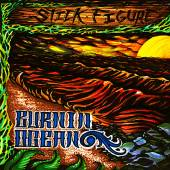 STICK FIGURE  - CD BURNIN OCEAN
