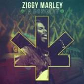 MARLEY ZIGGY AND THE MELODY M  - CD IN CONCERT