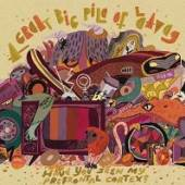 GREAT BIG PILE OF LEAVES  - VINYL HAVE YOU SEEN ..