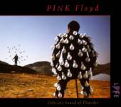 PINK FLOYD  - CD DELICATE SOUND OF THUNDER