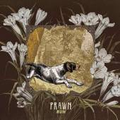 PRAWN  - CD RUN